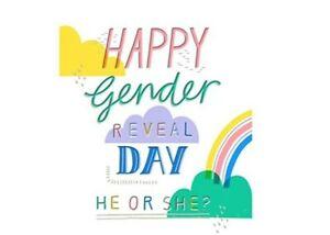 Hallmark Happy Gender reveal Day / Baby Shower Greeting Card