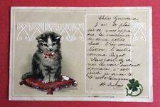 CPA. 1903. Petit Chat sur un Coussin. Trèfle. Décor. Gaufrée. Embossed.