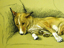 """Lucy Dawson Sweet Smart Basenji """"Gremlin"""" Rests on Chair 1946 Dog Print Matted"""