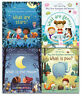 Usborne Lift The Flap Very First Questions and Answers 4 Books Collection Set