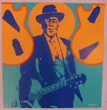 Ivan Messac Sérigraphie My Generation John Lee Hooker 2013