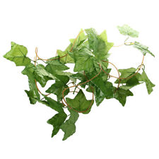 Ivy Wreath Decoration Artificial Plastic Flowers for Wedding Party H8j5 W7o1
