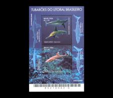 Sharks | Fishes Shortfin Mako Shark, Scalloped Hammerhead, Narrownose Smoot-