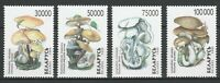Belarus 1998 Mushrooms 4 MNH stamps
