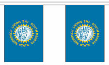 SOUTH DAKOTA U.S. STATE BUNTING 9 metres 30 flags Polyester flag