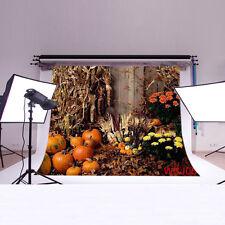 Photography Halloween Pumpkin Vinyl Backdrop Props Stuido Background 7X5FT WSJ06