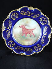 BEAUTIFUL GILDED CAVERSWALL PLATE - IRISH SETTER SIGNED BY M. BATES