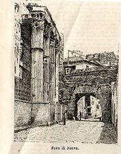 Stampa antica ROMA veduta del Foro di Nerva 1897 Old Print Rome