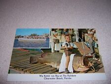 1950s GIANT GROUPER from RAINBOW PARTY BOAT CLEARWATER FLORIDA VTG POSTCARD