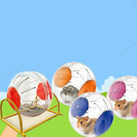 Durable Hamster Gyro Ball Running Ball Grounder Jogging Pet Exercise Toy