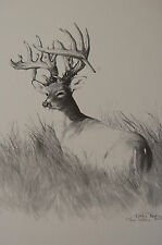 Black & White Limited Edition Art Print Whitetail Deer Large Rack Dealer Animals