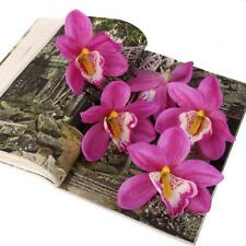 20pcs Purple Garden Artificial Plant Orchid Dendrobium Flower Head DIY 11cm