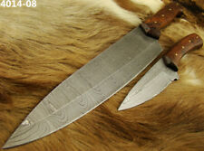 Alistar Set of 2 Handmade Damascus Knife Hunting/ Kitchen/Chef's Knives (4014-8