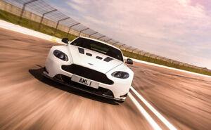 Genuine Aston Martin  Vantage AMR Light-Weight Race Mesh Grill OEM Brand NEW