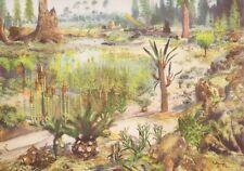 MESOZOIC Prehistoric Color LANDSCAPE Scene by Z. Burian. 1958 V Fine Art Print