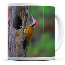Woodpecker Bird  - Drinks Mug Cup Kitchen Birthday Office Fun Gift #15805