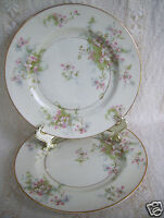 "Theodore Haviland Limoges New York Apple Blossom Pattern 7.5"" Set of 2 Plates"