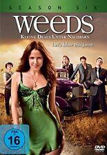 3 DVD-Box ° Weeds - kleine Deals unter Nachbarn ° Staffel 6 ° NEU & OVP