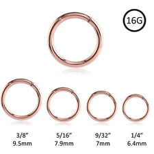 Segment Nose Ring Rose Gold Plated Surgical Steel Seamless Hoop Daith Tragus 16G