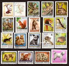 HONGRIE  animaux sauvages , domestiques,    52M-D104