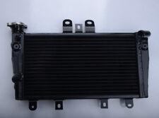 Aluminum Radiator For Triumph 1050 Speed Triple 2005-2010 06 07 08 09 10 BLACK