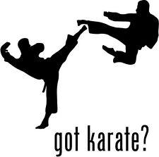 """Got Karate Car Window Decor Vinyl Decal Sticker- 6"""" Wide White"""