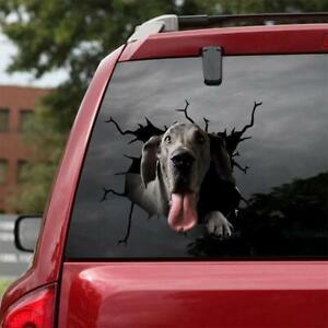 "Funny GREAT DANE CRACK Sticker 12x12"" PVC PLASTIC Car Window Meme Cattle Decal"