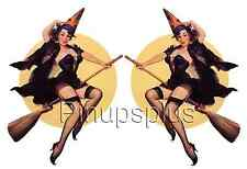 Pinup Girl Waterslide Decal Stickers 2 large Images Sexy Witch on Broom #76