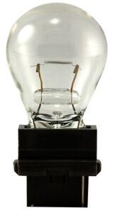 Back Up Light Bulb  Clear Lamp   Eiko 3156   QTY OF 2 BULBS      (SB24)