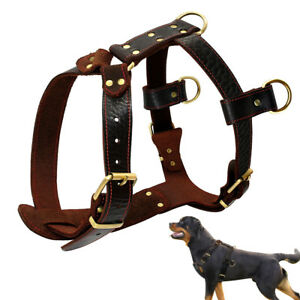 Soft Leather Dog Harness Strong for Medium Large Dogs Walking Training Pitbull