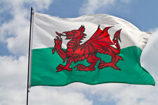More details for wales welsh dragon cymru rugby flags & bunting speedy delivery