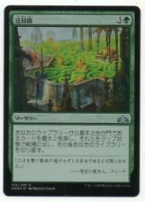 MTG Japanese Foil Circuitous Route Guilds of Ravnica NM