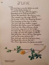 Edith Holden June Matthew Arnold Poem and Creeping Cinquefoil Calligraphy Print