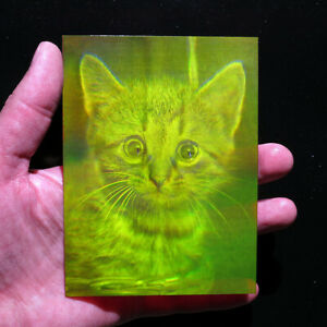 """4x5"""" 9x12cm Kitten - True 3d Laser hologram on film"""