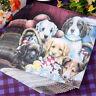 20pcs lovely puppy dog soft decoupage napkin paper  tissue for  party decor JLHC