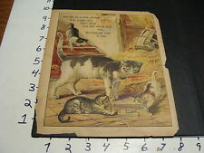 early German animal book, picture page-Cat