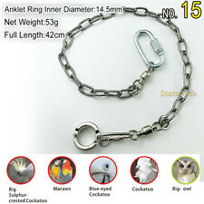 Parrot Foot Chain Stainless Steel Birds Anklet Ring for Pet Training