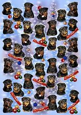 Rottweiler Dog Christmas Wrapping Paper By Starprint