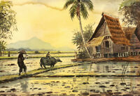 Mid 20th Century Watercolour - Paddy Fields