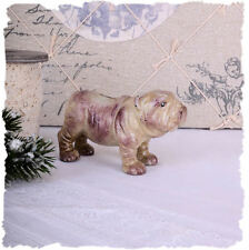 HUCHA PERRO HIERRO FUNDIDO bulldog carlino Shabby Figura carlino CAJA DE METAL