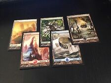 MTG MAGIC ZENDIKAR 5 FULL ART BASIC LANDS NM