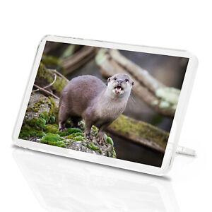 Adorable Otter Classic Fridge Magnet - Nature Wildlife Animal Cool Gift #16489