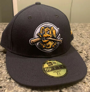 Charleston Riverdogs Hat Cap Fitted 7 3/4 New Era 59Fifty MiLB