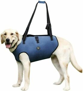 Blue COODEO Dog Lift Vest Harness, Full Body Support & Recovery Sling XL