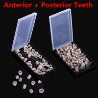 1Box Temporary Crown Material for Anterior Teeth / Posterior Teeth Dental Sale