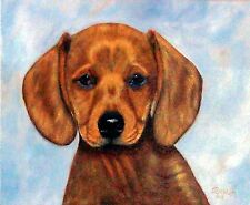 "Animal-Dog  ""DACHSHUND=DOXIE PORTRAIT""'  Orig. oil painting =Orphie Barella"