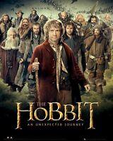 THE HOBBIT MOVIE POSTER ~ MAP CAST 16x20 Unexpected Journey Gandalf Bilbo 1488