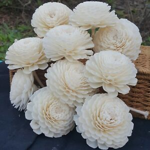 Jasmine Sola Wood Diffusers Flowers 7-8 CM with Cotton Rope Home decor & Wedding