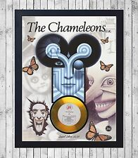 THE CHAMELEONS WHAT DOES? CUADRO CON GOLD O PLATINUM CD EDICION LIMITADA. FRAMED