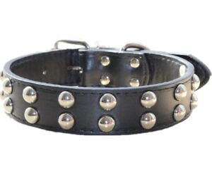 """1.2"""" Leather Dog Collar Spiked Studded Collar Medium Large Breed Pitbull Terrier"""